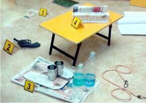 Crime Scene Investigation : Poison